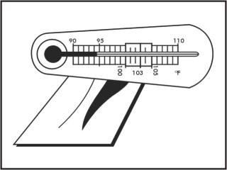 Termômetros incubação